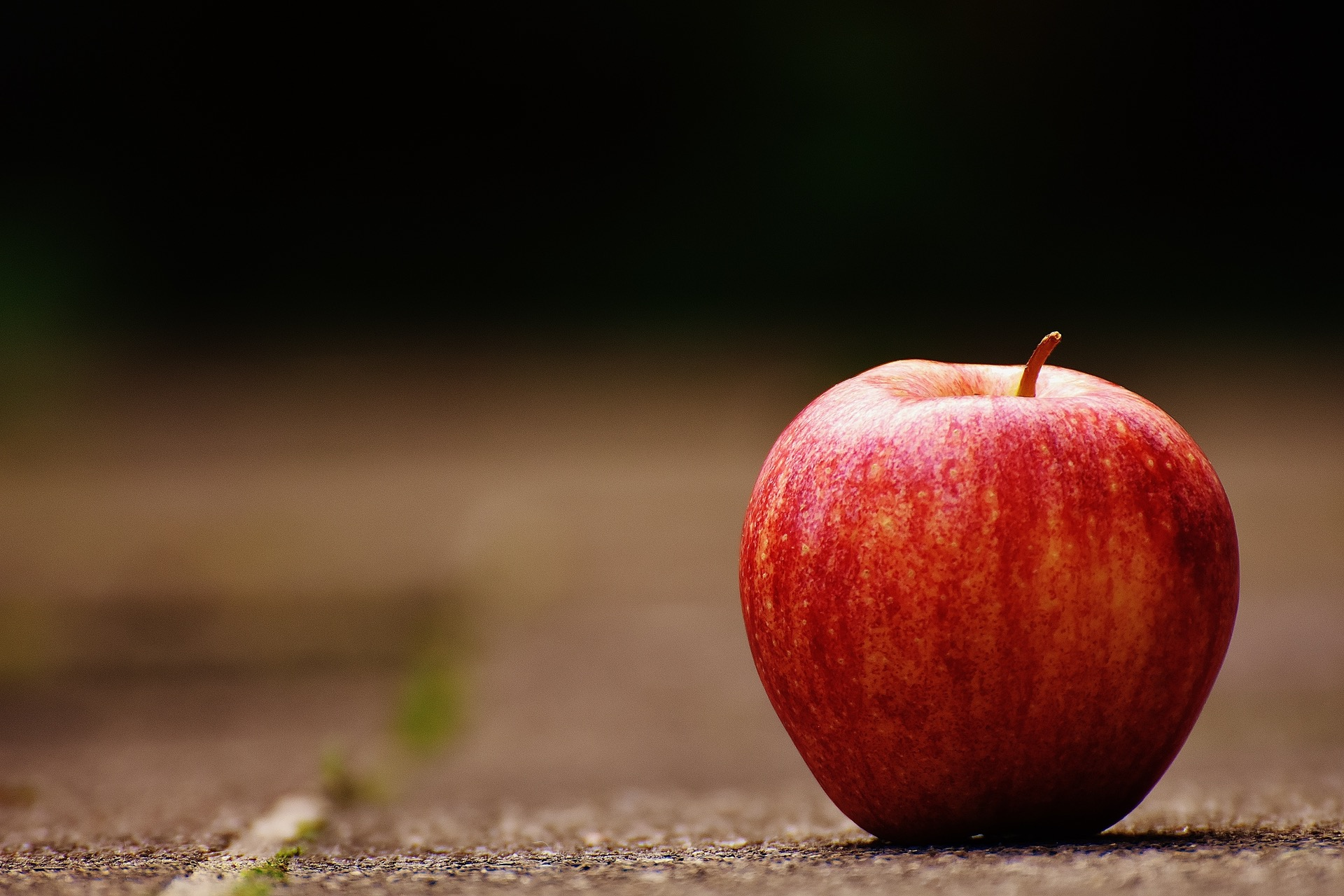 Apple Holistic Nutritionist